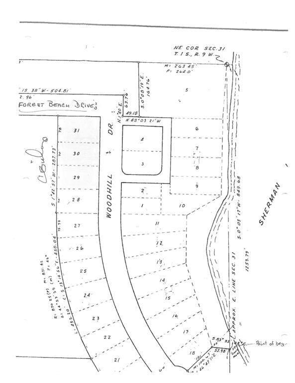 Forest Beach Drive, Richland Twp, MI 49083 (#64021100590) :: Novak & Associates