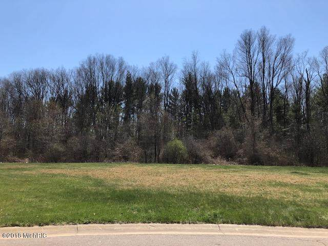 Castleridge Drive, Battle Creek, MI 49015 (#64021101062) :: The Alex Nugent Team | Real Estate One