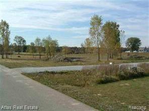6498 Bachmann Lane, Atlas Twp, MI 48438 (#2210071578) :: Real Estate For A CAUSE