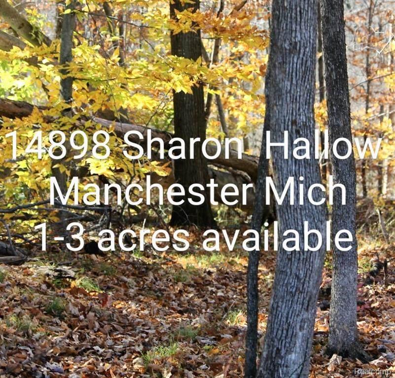 14898 Sharon Hollow Road - Photo 1