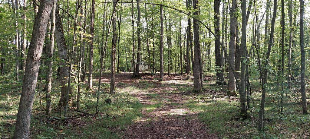 V/L Oakwood Trail - Photo 1