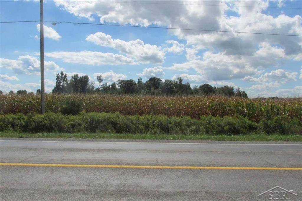 Lot C Birch Run Road - Photo 1