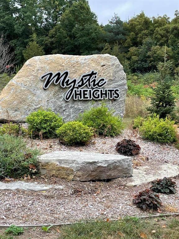 10827 Mystic Heights Trail, Oshtemo Twp, MI 49071 (#66021107136) :: Duneske Real Estate Advisors