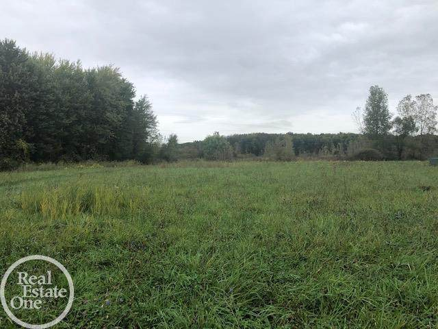 0 Forest Glade, Chesterfield Twp, MI 48047 (#58050058117) :: The BK Agency