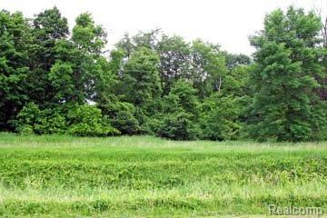LOT 8 Stagecoach Trail, Mckinley Twp, MI 48755 (#210045232) :: The Buckley Jolley Real Estate Team