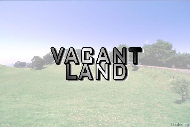 VACANT Judd Road - Photo 1