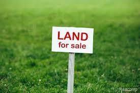 Parcel E Moss Road, Mussey Twp, MI 48014 (#219078570) :: GK Real Estate Team