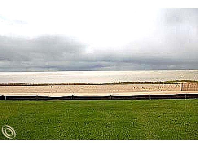9929 Sunset Boulevard, Caseville Twp, MI 48755 (#210056449) :: The Buckley Jolley Real Estate Team
