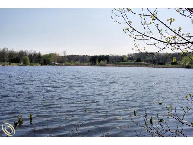 LOT 19 Oak Shore, Green Oak Twp, MI 48178 (#213064243) :: The Buckley Jolley Real Estate Team