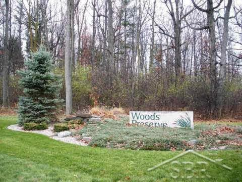 38 Woods Preserve - Photo 1