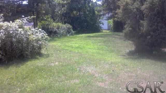 320 E Oak, Elsie, MI 48831 (#60031157833) :: Robert E Smith Realty