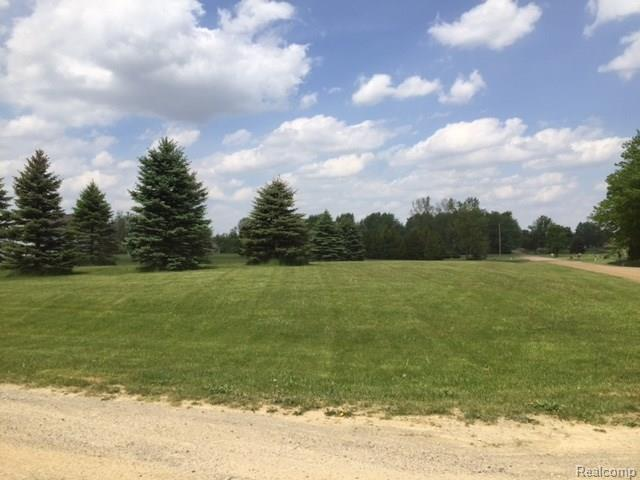0 Eva (Lot 4) Lane, Conway Twp, MI 48836 (#217036491) :: The Buckley Jolley Real Estate Team