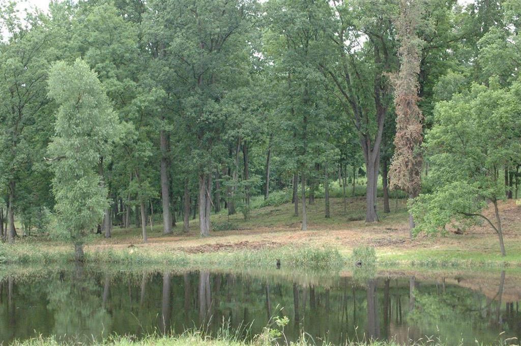 3359 Oak Hollow - Photo 1