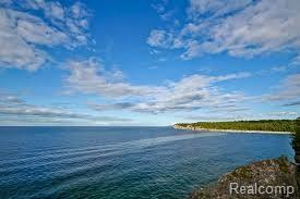 0 E Michigan (Parcel 4) Avenue, Sims Twp, MI 48703 (#217072339) :: Duneske Real Estate Advisors
