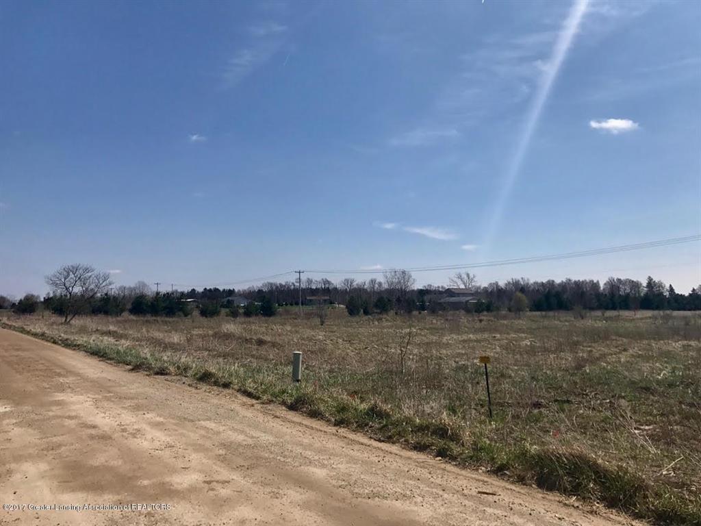 0 Mills Highway - Photo 1