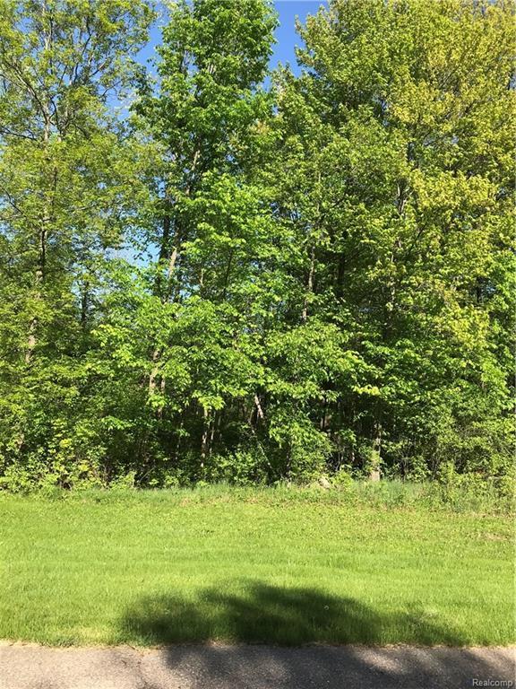 00 Oak Trail, Addison Twp, MI 48370 (#218023486) :: RE/MAX Classic