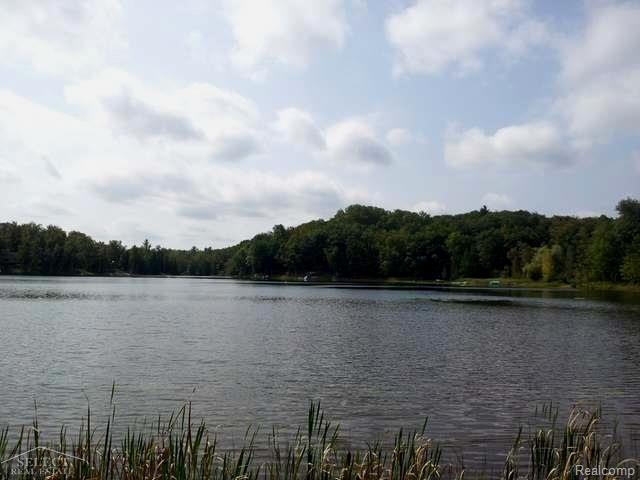 0 Blue Lake Drive, Sherman Twp, MI 48624 (MLS #58031343591) :: The Toth Team