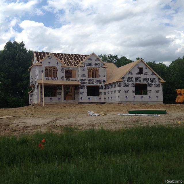 4504 Mckenna Drive, Raisin, MI 49221 (#543256011) :: The Buckley Jolley Real Estate Team