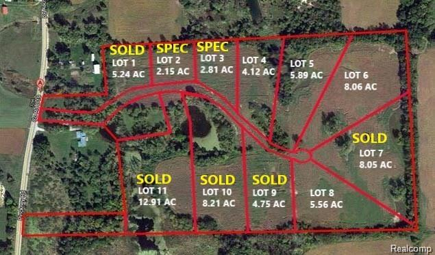 Lot 4 Chestnut Creek Drive, Marion Twp, MI 48844 (#218066413) :: The Buckley Jolley Real Estate Team