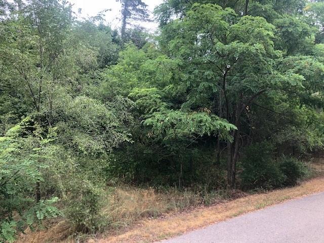 4418 Eucalyptus, Putnam Twp, MI 48169 (#50100003265) :: The Buckley Jolley Real Estate Team