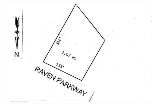 999 Raven Parkway - Photo 1