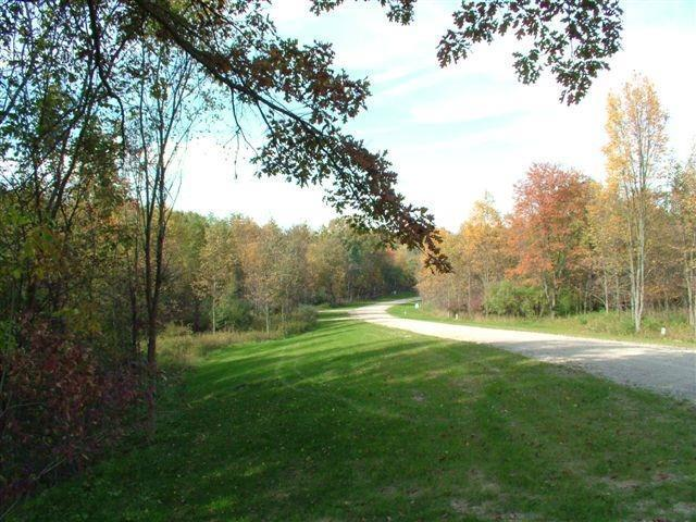 9377 Timber Lane, Webster Twp, MI 48130 (#543262688) :: RE/MAX Classic