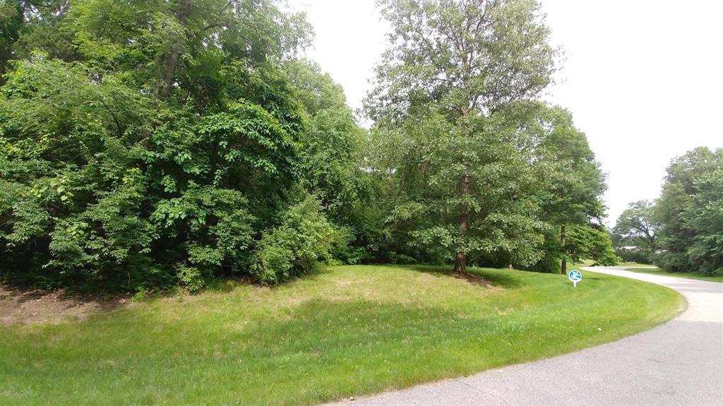 7274 Woodhaven Drive - Photo 1