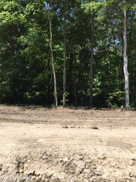Lot 50 Ashley Ave - Photo 1