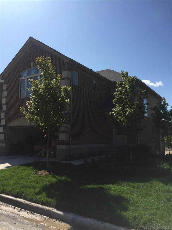 15012 Friar, Shelby Twp, MI 48315 (#58031380545) :: The Mulvihill Group