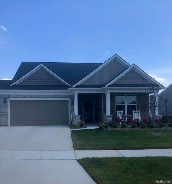 1119 Lark, Orion Twp, MI 48360 (#219081108) :: Team Sanford