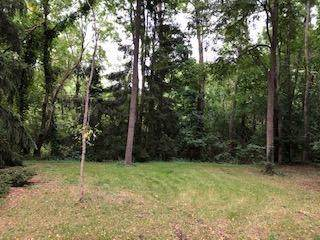 0 Traver Road, Ann Arbor Twp, MI 48105 (#543268566) :: The Buckley Jolley Real Estate Team