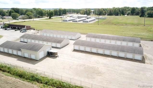 470 S Sandusky Road, Watertown Twp, MI 48471 (#219094168) :: The Buckley Jolley Real Estate Team