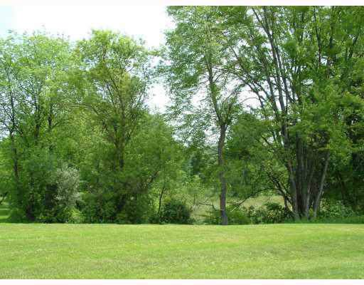 7068 Eagle Point (Lot 28) Drive, Dexter, MI 48130 (#543269079) :: The Buckley Jolley Real Estate Team