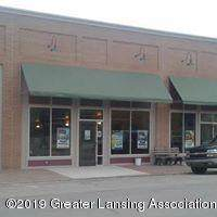116 E Grand River Road, Laingsburg, MI 48848 (#630000242023) :: Keller Williams West Bloomfield