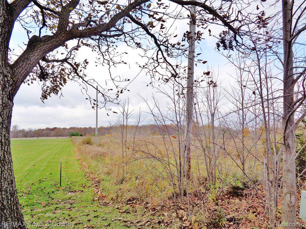 9340 Duffield Road - Photo 1