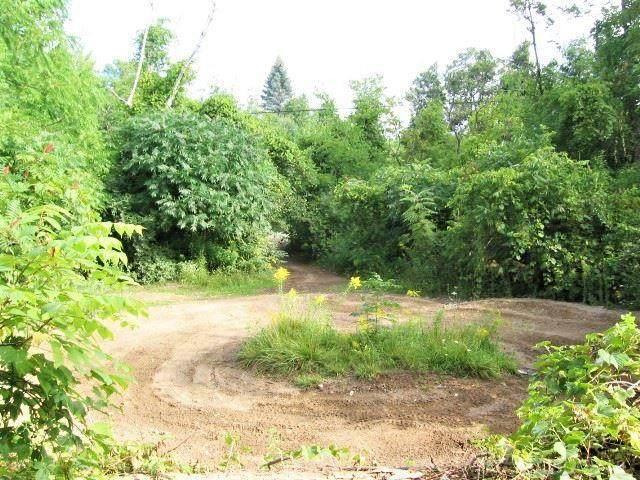 000 Birchtree, Worth Twp, MI 48450 (#58050022170) :: Alan Brown Group
