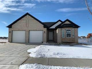 5121 Westminster Drive, Dundee Twp, MI 48131 (MLS #2210001172) :: The John Wentworth Group