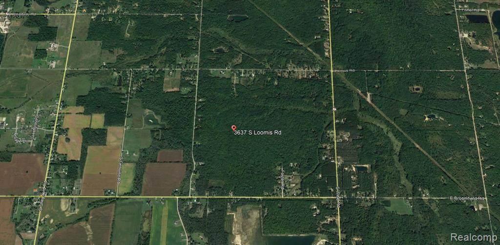 3637 Loomis Road - Photo 1