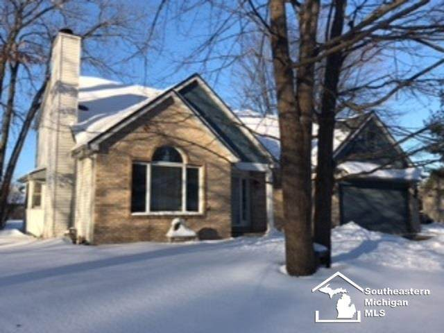 1328 Borg Avenue, Bedford Twp, MI 48182 (MLS #57050034656) :: The John Wentworth Group