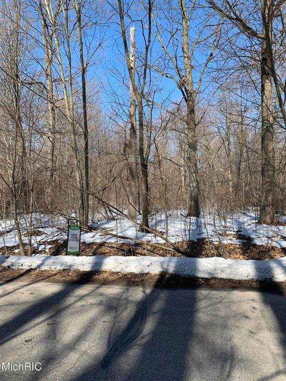 Lot 128 East Shore Drive, Douglass Twp, MI 48888 (#65021006720) :: NextHome Showcase