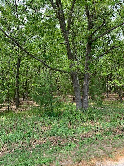Lot 4 Old Channel Trail, Montague Twp, MI 49437 (#65021019382) :: Alan Brown Group