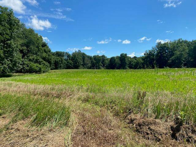 Lilly Road, NOBLE TWP, MI 49028 (#68021024957) :: Real Estate For A CAUSE