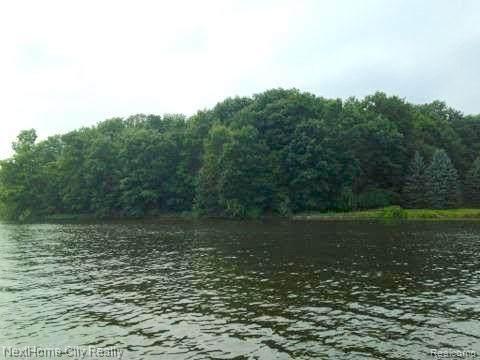 00 Lake Hill, Hadley Twp, MI 48455 (#2210062187) :: The Vance Group   Keller Williams Domain