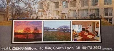 26965 Milford Road #46, Lyon Twp, MI 48178 (#2210063951) :: The Vance Group | Keller Williams Domain