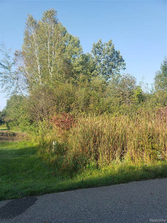 Vacant Land Thread Valley, Groveland Twp, MI 48442 (#2210078144) :: Real Estate For A CAUSE