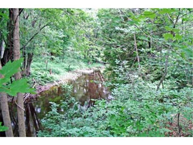 LOT 18 Acorn, Hume Twp, MI 48467 (#213030367) :: The Buckley Jolley Real Estate Team