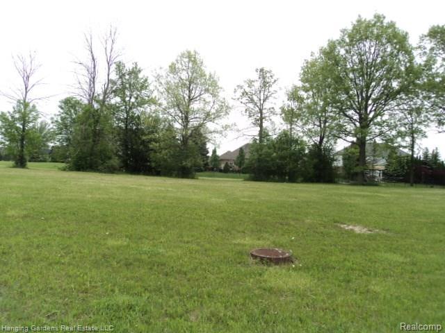 Lot 74 Irene Drive, Saint Clair Twp, MI 48079 (#217043120) :: The Buckley Jolley Real Estate Team