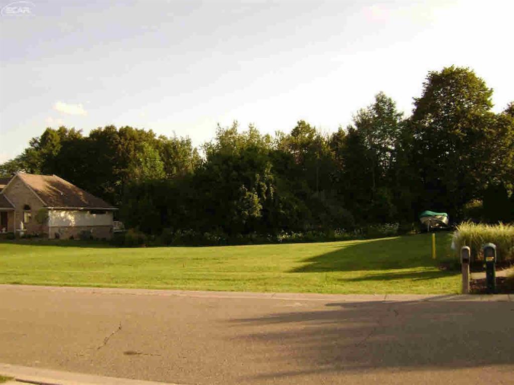 8461 Woodridge Drive - Photo 1