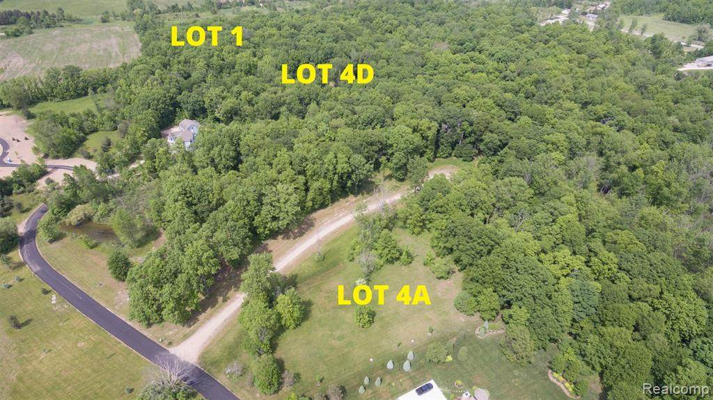 9523 Hickory Ridge - Lot 4D Road - Photo 1