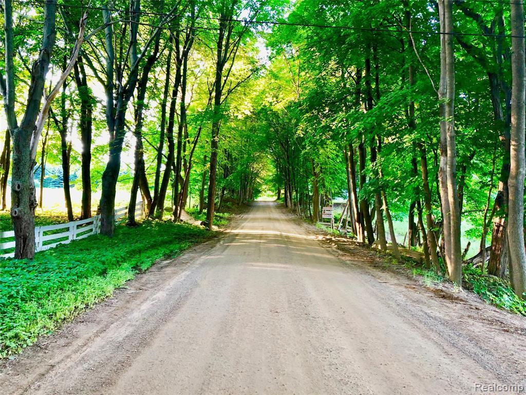 5375 Lake George Road - Photo 1